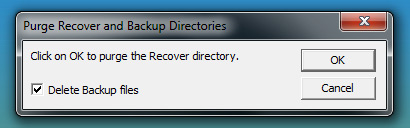 Delete Recovery Files Dialog Box